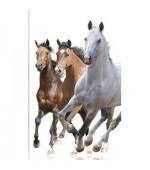 2 броя в пакет, завеси-японска стена,плътна и тънка, всяка с размер 245x45см. за окачване на ПВЦ или алуминиева релса, коне,код-80402